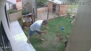 Régis essaye de se débarrasser d'une fourmilière dans son jardin
